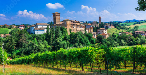 Beautiful traditional medieval Levizzano, with vineyards. Emilia Romagna. Italy