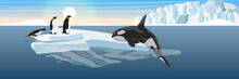 A Large Killer Whale Jumps Out Of The Water Onto The Ice Floe. Hunting For Penguins. The Glacier And The Ice-break From It, Floating In The Dark Cold Sea. Vector Landscape Of The Antarctic.