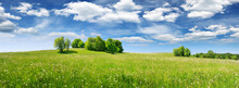 Green Field Panorama And Blue Sky With White Clouds. Panoramic View To Grass On The Hill On Sunny Summer Day