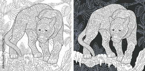Fototapeta premium Black panther. Coloring Page. Coloring Book.