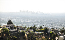 Hollywood Hills View