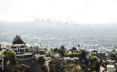 Fotomural Hollywood hills view