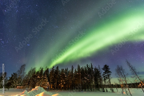 Foto op Plexiglas Noord Europa Northern Lights over snow-covered forest