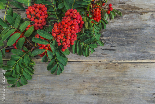 Fotografie, Obraz  Bouquet of rowan berries with lieaves on old wooden background with copy space