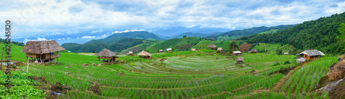 Fotoposter Rijstvelden Panoramic view house and terraced rice paddy field in Chiangmai, Thailand.