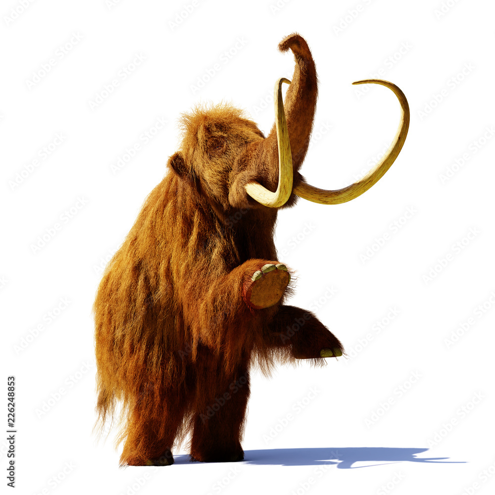 woolly mammoth standing on two legs, prehistoric mammal isolated with shadow on white background (3d rendering)