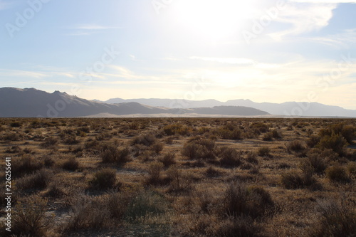 Foto op Aluminium Chocoladebruin Honey Lake Valley, California