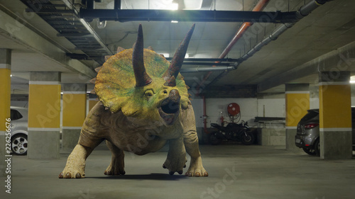 Fotografie, Obraz Triceratops horridus dinosaur in parking garage from the Jurassic era (surreal 3