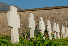 Crosses In The Cemetery