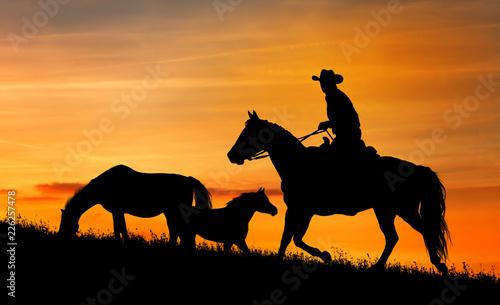 Sylwetka kowboja i konia o zachodzie słońca