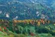 志賀高原の紅葉の絶景を望む