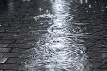 Flooded Street Sidewalk With R...