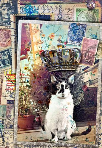 Foto op Aluminium Imagination Re gatto. Vecchia fotografia surreale, e cartoline vintage con gatto in giardino, francobolli antichi e corona