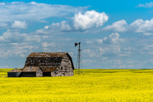 Vintage Barn, Bins And Windmil...