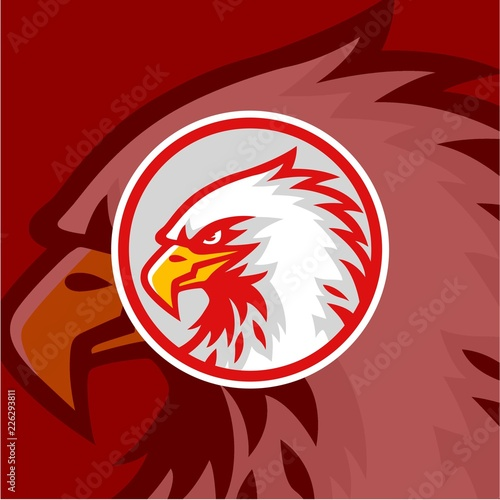 Eagle Head with Red Background Logo Vector Design, Sign