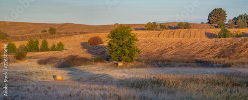 panorama of fields and meadows on a magnificent misty and sunny morning. landscape picture resembling Italian Tuscany. Autumn, Poland, Drawsko Lake District