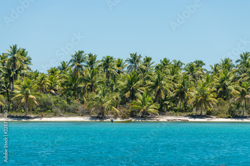 Spoed Foto op Canvas Eiland Coastline of tropical island with beautiful palms (background)
