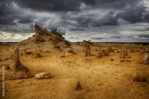 Garden Poster Pinnacle desert