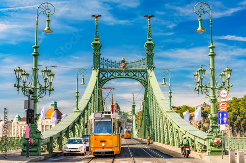 Liberty Bridge in Budapest Canvas Print