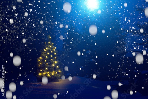Beautiful Christmas Background.Merry Christmas Christmas Tree Outside Snowfall In The