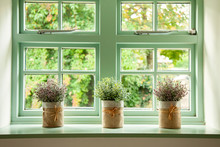 Green Cottage Window, With Pla...