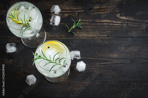 Staande foto Cocktail Gin and tonic cocktail