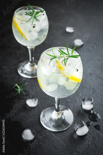 Fotobehang Cocktail Gin and tonic cocktail