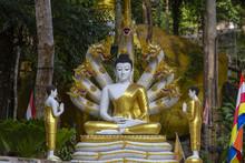 Beautiful Buddha Statue With N...