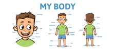 Vocabulary For Parts Of Male Body. Cartoon Boy Body With Description. Colorful Flat Vector Illustration, Horizontal.