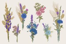 Set Bouquets. Design Elements....