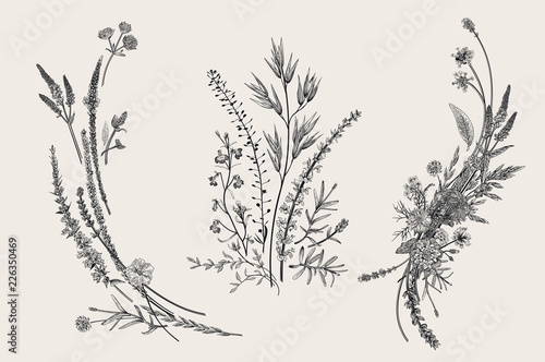 Summer floral composition Wallpaper Mural