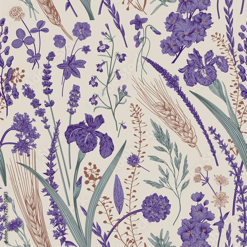 lato-wzor-kwiaty-i-rosliny-pol-i-lasow-wektorowa-rocznik-botaniczna-ilustracja-fioletowy-i-szmaragdowy