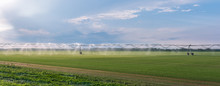 Panorama Of The Automated Farm...