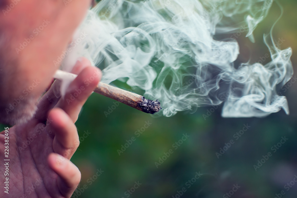 Fototapety, obrazy: A man smokes a joint. Medical marijuana use and legalization of the cannabis, light drugs concept