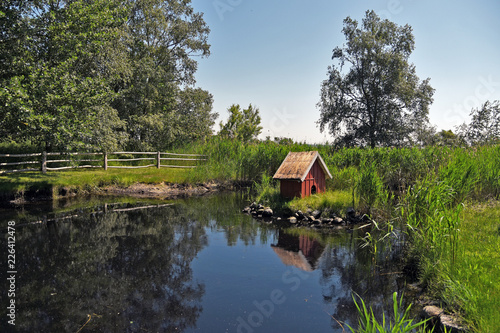 Fotografie, Obraz  Duck house at a pond