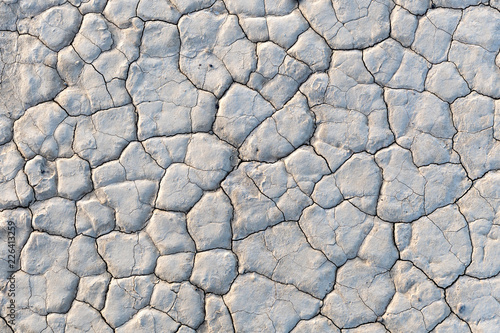Closeup of the dry surface of Bonnie Claire Playa in Nevada Canvas Print