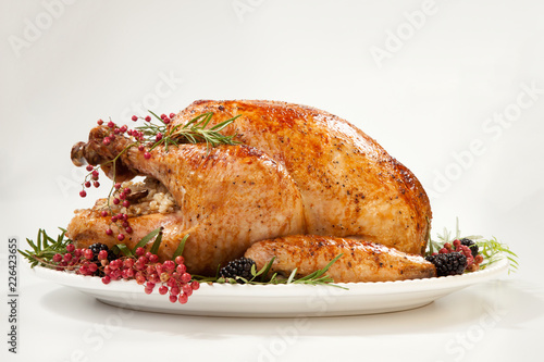 Thanksgiving Turkey on White