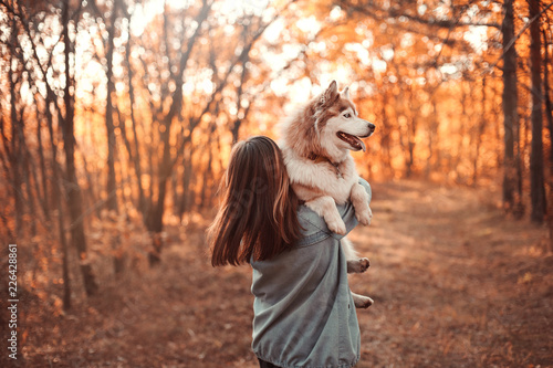 fototapeta na lodówkę Girl holding siberian husky on hands in the beautiful autumn park