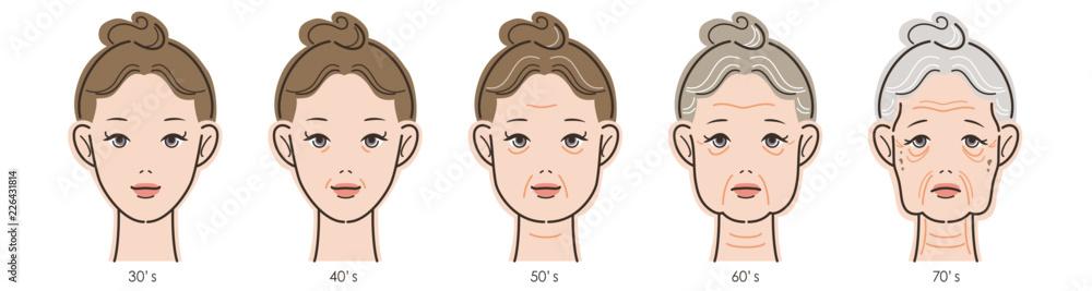 Fototapeta 女性の顔、加齢による変化の過程。30代から70代まで