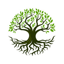 Tree Root Design Illustration