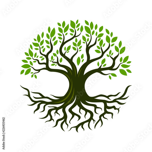 Tree root design illustration Wall mural