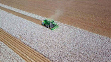 Large Six Row Baler Cotton Pic...