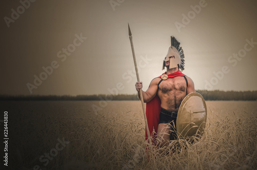 Photo  Spartan ancient warrior in the helm holding a spear in hand wearing in the red cloak standing in the wheat field