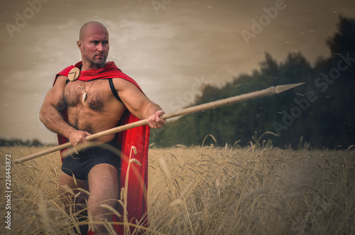 Photo  Spartan ancient warrior in the helm holding a spear in hand wearing in the red cloak is standing in the wheat field