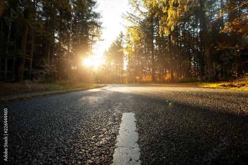 Landstraße führt durch herbstlichen Wald