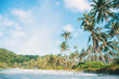 Coconut tree on island with sky.