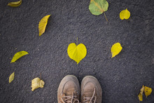 Autumn Season, Feet In Shoes A...