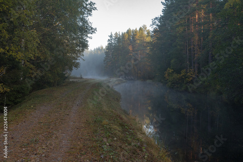 Papiers peints Foret brouillard calm and foggy morning near a channel in Sweden