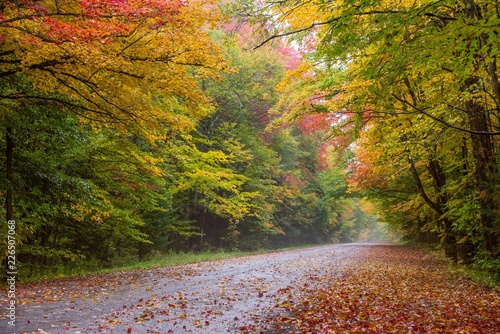 Fototapeta Road scene in New England with Fall color
