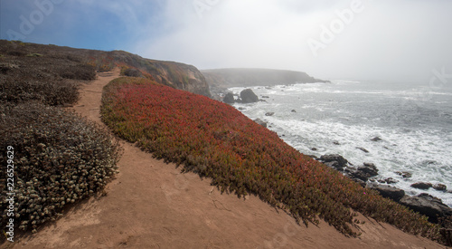 Keuken foto achterwand Verenigde Staten Bluff hiking path on rugged Central California coastline at Cambria California United States